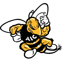 AIC Yellow Jackets 2001-2008 Primary Logo Light Iron-on Stickers (Heat Transfers)
