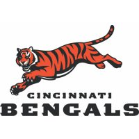 Cincinnati Bengals Alternate Logo  Light Iron-on Stickers (Heat Transfers) version 2