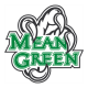North Texas Mean Green 2005-Pres Alternate Logo4 Light Iron-on Stickers (Heat Transfers)