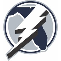 Tampa Bay Lightning Alternate Logo  Light Iron-on Stickers (Heat Transfers)