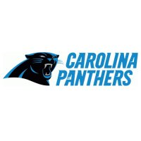 2012 Carolina Panthers Script Logo  Light Iron-on Stickers (Heat Transfers)
