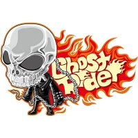 Ghost Rider light t shirt iron on transfer