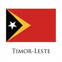 DEMOCRATIC REPUBLIC OF TIMOR-LESTE Flags light iron ons