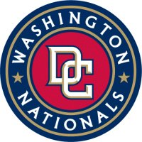 Washington Nationals Alternate Logo  Light Iron-on Stickers (Heat Transfers) version 1