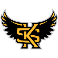 Kennesaw State Owls 2012-Pres Alternate Logo Light Iron-on Stickers (Heat Transfers)