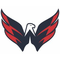 Washington Capitals Alternate Logo  Light Iron-on Stickers (Heat Transfers) version 1