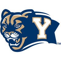 Brigham Young Cougars 2005-Pres Secondary Logo Light Iron-on Stickers (Heat Transfers)