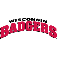 2002-Pres Wisconsin Badgers Wordmark Logo Light Iron-on Stickers (Heat Transfers)