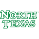 North Texas Mean Green 2005-Pres Wordmark Logo5 Light Iron-on Stickers (Heat Transfers)