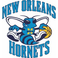 New Orleans Hornets Primary Logo  Light Iron-on Stickers (Heat Transfers)