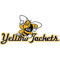 AIC Yellow Jackets 2009-Pres Alternate Logo2 Light Iron-on Stickers (Heat Transfers)