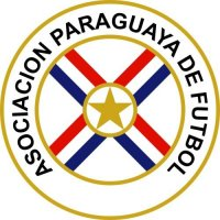Paraguay Football Confederation Light Iron-on Stickers (Heat Transfers)