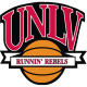 UNLV Rebels 2006-Pres Misc Logo Light Iron-on Stickers (Heat Transfers)