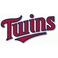 Minnesota Twins Script Logo  Light Iron-on Stickers (Heat Transfers) version 1