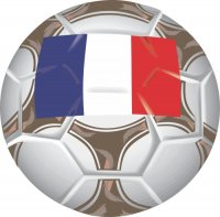 France Soccer Light Iron-on Stickers (Heat Transfers)