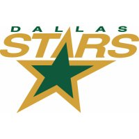 Dallas Stars Primary Logo Light Iron-on Stickers (Heat Transfers) (Large front logo)