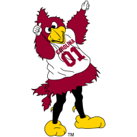 2002-Pres South Carolina Gamecocks Mascot Logo Light Iron-on Stickers (Heat Transfers)