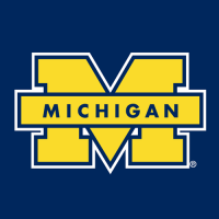1996-Pres Michigan Wolverines Secondary Logo Light Iron-on Stickers (Heat Transfers)