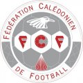 New Caledonia Football Confederation Light Iron-on Stickers (Heat Transfers)