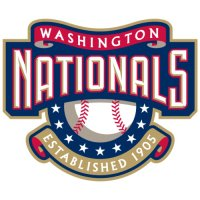 Washington Nationals Alternate Logo  Light Iron-on Stickers (Heat Transfers) version 2
