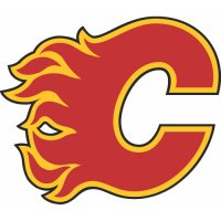 Calgary Flames Primary Logo  Light Iron-on Stickers (Heat Transfers)