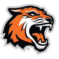 RIT Tigers 2004-Pres Alternate Logo1 Light Iron-on Stickers (Heat Transfers)