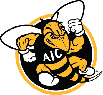 AIC Yellow Jackets 2009-Pres Alternate Logo6 Light Iron-on Stickers (Heat Transfers)