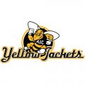AIC Yellow Jackets 2009-Pres Alternate Logo4 Light Iron-on Stickers (Heat Transfers)