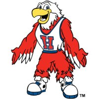 Hartford Hawks 1984-Pres Mascot Logo Light Iron-on Stickers (Heat Transfers)