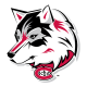 2000-Pres St. Cloud State Huskies Alternate Logo Light Iron-on Stickers (Heat Transfers) Light Iron-on Stickers (Heat Transfers)
