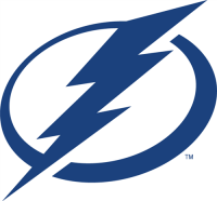Tampa Bay Lightning 2011 12-Pres Primary Logo Light Iron-on Stickers (Heat Transfers)