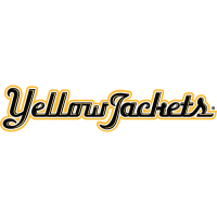 AIC Yellow Jackets 2009-Pres Wordmark Logo Light Iron-on Stickers (Heat Transfers)