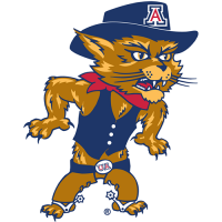 Arizona Wildcats 2003-Pres Mascot Logo Light Iron-on Stickers (Heat Transfers)