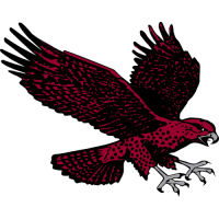 2007-Pres Maryland-Eastern Shore Hawks Secondary Logo Light Iron-on Stickers (Heat Transfers)