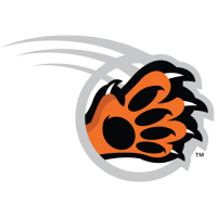 RIT Tigers 2004-Pres Alternate Logo5 Light Iron-on Stickers (Heat Transfers)