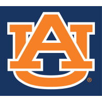 Auburn Tigers 1982-Pres Alternate Logo Light Iron-on Stickers (Heat Transfers)