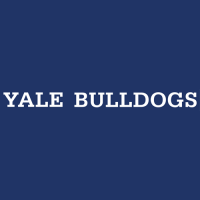 1998-Pres Yale Bulldogs Wordmark Logo Light Iron-on Stickers (Heat Transfers)