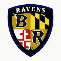 Baltimore Ravens Alternate Logo  Light Iron-on Stickers (Heat Transfers) version 2