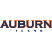 Auburn Tigers 2004-Pres Wordmark Logo Light Iron-on Stickers (Heat Transfers)