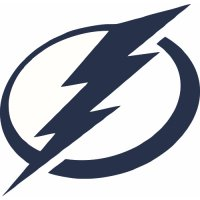 Tampa Bay Lightning Primary Logo Light Iron-on Stickers (Heat Transfers) (Large Front Logo)