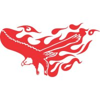 Eagle Flames light-colored apparel iron on stickers version 8