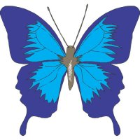 Butterfly Light Iron On Stickers (Heat Transfers) version 25