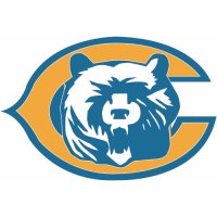 Chicago Bears Alternate Logo  Light Iron-on Stickers (Heat Transfers)