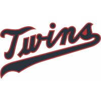 Minnesota Twins Script Logo  Light Iron-on Stickers (Heat Transfers) version 4