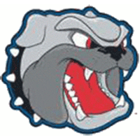 2012-Pres UNC Asheville Bulldogs Alternate Logo Light Iron-on Stickers (Heat Transfers)
