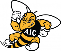 AIC Yellow Jackets 2009-Pres Secondary Logo Light Iron-on Stickers (Heat Transfers)