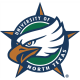 North Texas Mean Green 1995-2004 Secondary Logo1 Light Iron-on Stickers (Heat Transfers)
