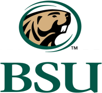 Bemidji State Beavers 2004-Pres Secondary Logo Light Iron-on Stickers (Heat Transfers)
