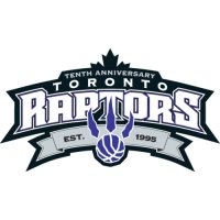 Toronto Raptors Anniversary Logo  Light Iron-on Stickers (Heat Transfers)