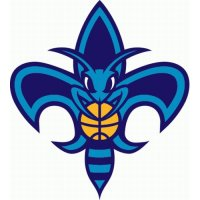 New Orleans Hornets Alternate Logo  Light Iron-on Stickers (Heat Transfers) version 3
